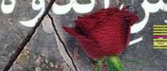 دارویی-تلخ-برای-احیای-حافظه-جمعی-ما-محسن-کاظمی