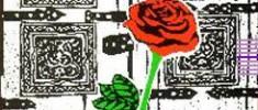 نقدی-بر-ثریا-در-اغما-احمد-غلامی-و-امیر-هوشنگ-افتخاریراد