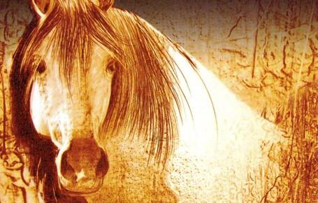 پیرامون-زمان-اسبهای-سفید-مهدی-معرف