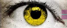نگاهی-به-کلکسیونر-چشم-آناهیتا-مجاوری